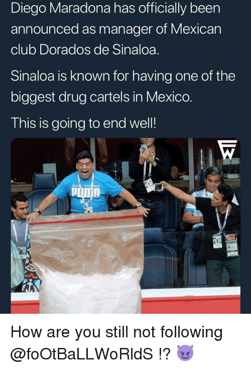 cartels: Diego Maradona has officially been  announced as manager of Mexican  club Dorados de Sinaloa.  Sinaloa is known for having one of the  biggest drug cartels in Mexico  This is going to end well!  ORIGIM L SPOR WEAR How are you still not following @foOtBaLLWoRldS !? 😈