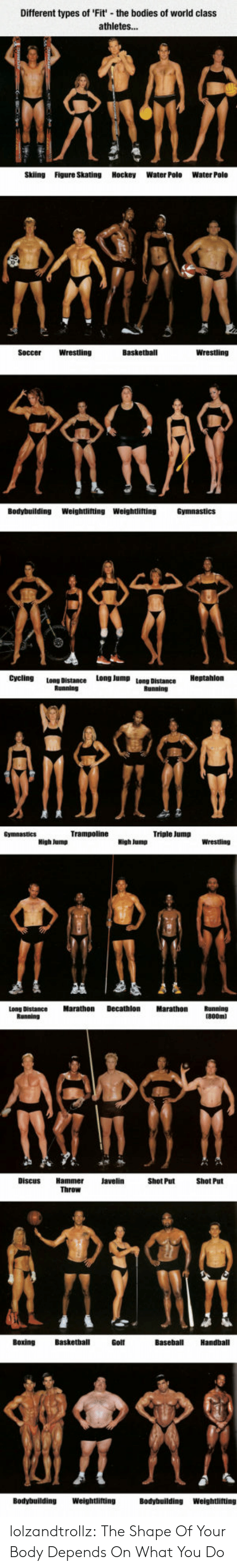Athletes: Different types of 'Fit' the boo  of world class  athletes...  Skiing  Figure Skating Hockey  Water Polo  Water Polo  Basketball  Wrestling  Wrestling  Soccer  Bodybuilding  Weightlifting Weightlifting  Cycling  Long Jump  Long Distance  Bunninn  Triple Jump  Decathlon  Marathon  Marathon  Long Distance  Shot Put  Throw  Basketball  Baseball  Handball  Bοxing  Golf  Weightlifting  Bodybuilding  Bodybuilding  Weightlifting lolzandtrollz:  The Shape Of Your Body Depends On What You Do