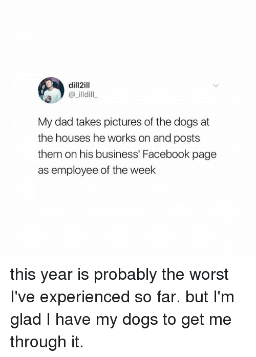 Dad, Dogs, and Facebook: dill2ill  @ illdill  My dad takes pictures of the dogs at  the houses he works on and posts  them on his business' Facebook page  as employee of the week this year is probably the worst I've experienced so far. but I'm glad I have my dogs to get me through it.