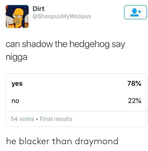 shadow the hedgehog: Dirt  @ShoopusMyWoopus  can shadow the hedgehog say  nigga  yes  78%  no  22%  54 votes Final results he blacker than draymond