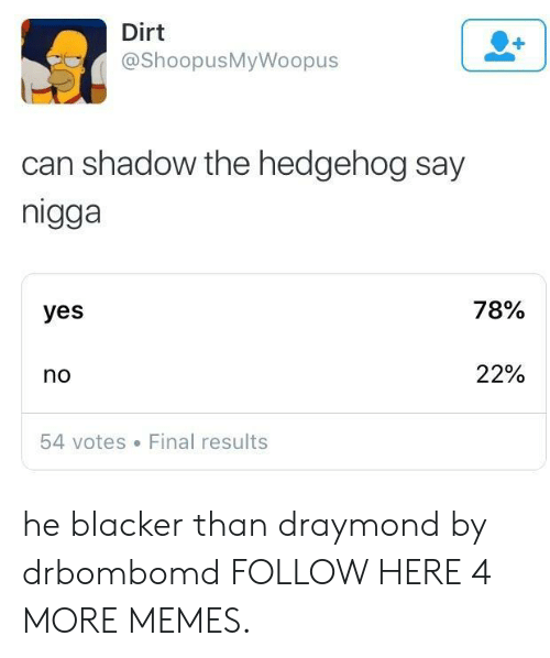 shadow the hedgehog: Dirt  @ShoopusMyWoopus  can shadow the hedgehog say  nigga  yes  78%  no  22%  54 votes Final results he blacker than draymond by drbombomd FOLLOW HERE 4 MORE MEMES.
