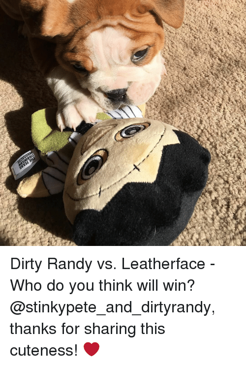 Memes, Dirty, and 🤖: Dirty Randy vs. Leatherface - Who do you think will win? @stinkypete_and_dirtyrandy, thanks for sharing this cuteness! ❤️