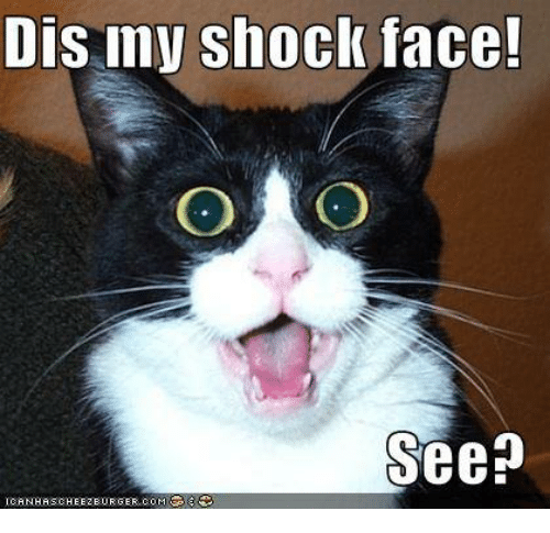 Dis May Shock Face! See ICANHASCHEEZEURGER | Meme on SIZZLE