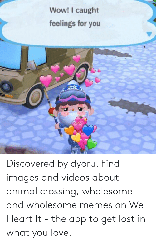 app: Discovered by dyoru. Find images and videos about animal crossing, wholesome and wholesome memes on We Heart It - the app to get lost in what you love.
