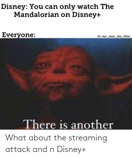 streaming: Disney: You can only watch The  Mandalorian on Disney+  Everyone:  IG: star _wars the 501st  There is another What about the streaming attack and n Disney+