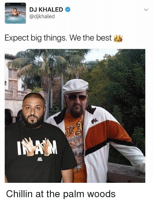 DJ Khaled, Memes, and Best: DJ KHALED  haled  Expect big things. We the best  @noxious Chillin at the palm woods