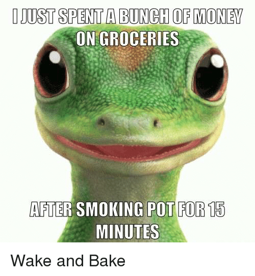 Baked, Memes, and Baking: DJUSTSPENTA BUNCH OF MONEY  ON GROCERIES  AFTER SMOKING POT FOR 15  MINUTES Wake and Bake