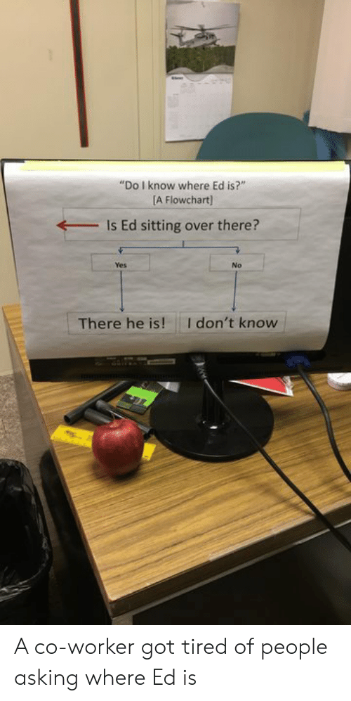 """co-worker: """"Do I know where Ed is?""""  [A Flowchart)  Is Ed sitting over there?  Yes  No  I don't know  There he is! A co-worker got tired of people asking where Ed is"""