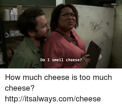 Memes, Smell, and Too Much: Do I smell cheese? How much cheese is too much cheese? http://itsalways.com/cheese