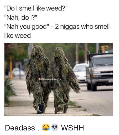 """Memes, Smell, and Weed: """"Do l smell like weed?""""  """"Nah, do I?""""  """"Nah you good"""" - 2 niggas who smell  like weed  D@CanadaHipHop Deadass.. 😂💀 WSHH"""