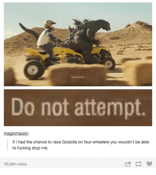dank: Do not attempt  o not attempt  magicmaZZIC:  If I had the chance to race Godzilla on four-wheelers you wouldn't be able  to fucking stop me  70,504 notes