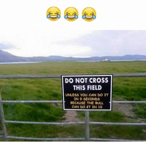 Cross, Can, and Bull: DO NOT CROSS  THIS FIELD  UNLESS YOU CAN DO IT  IN 9 SECONDS  BECAUSE THE BULL  CAN DO RT IN 10