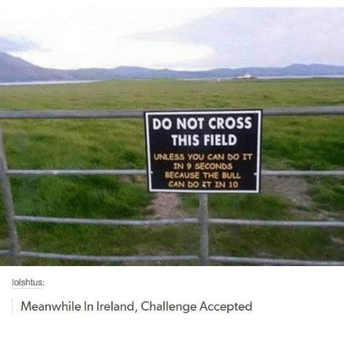Bulls, Cross, and Ireland: DO NOT CROSS  THIS FIELD  UNLESS YOU CAN DO IT  IN 9 SECONDS  BECAUSE THE BULL  CAN DO IT IN 10  olshtus  Meanwhile In Ireland, Challenge Accepted