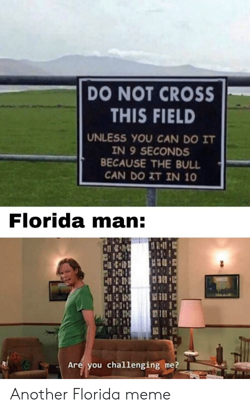 Florida Meme: DO NOT CROSS  THIS FIELD  UNLESS YOU CAN DO IT  IN 9 SECONDS  BECAUSE THE BULL  CAN DO IT IN 10  Florida man:  HB  Are you challenging me? Another Florida meme