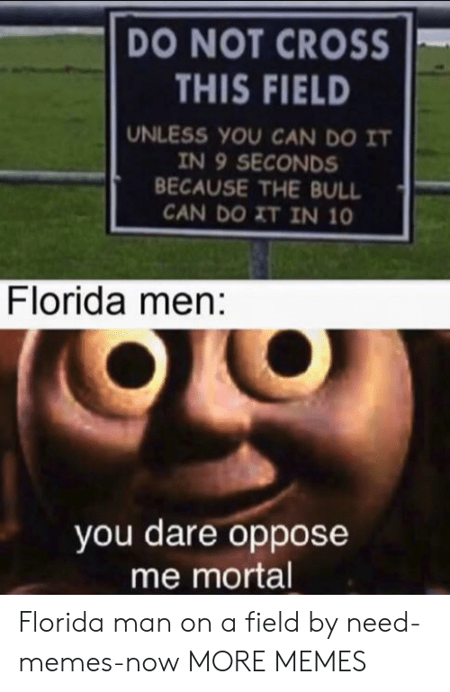 Memes Now: DO NOT CROSS  THIS FIELD  UNLESS YOU CAN DO IT  IN 9 SECONDS  BECAUSE THE BULL  CAN DO XT IN 10  Florida men:  you dare oppose  me mortal Florida man on a field by need-memes-now MORE MEMES