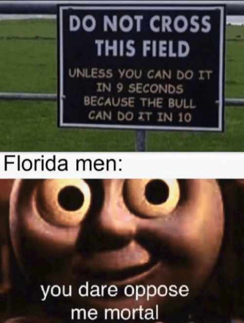 bull: DO NOT CROSS  THIS FIELD  UNLESS YOU CAN DO IT  IN 9 SECONDS  BECAUSE THE BULL  CAN DO XT IN 10  Florida men:  you dare oppose  me mortal