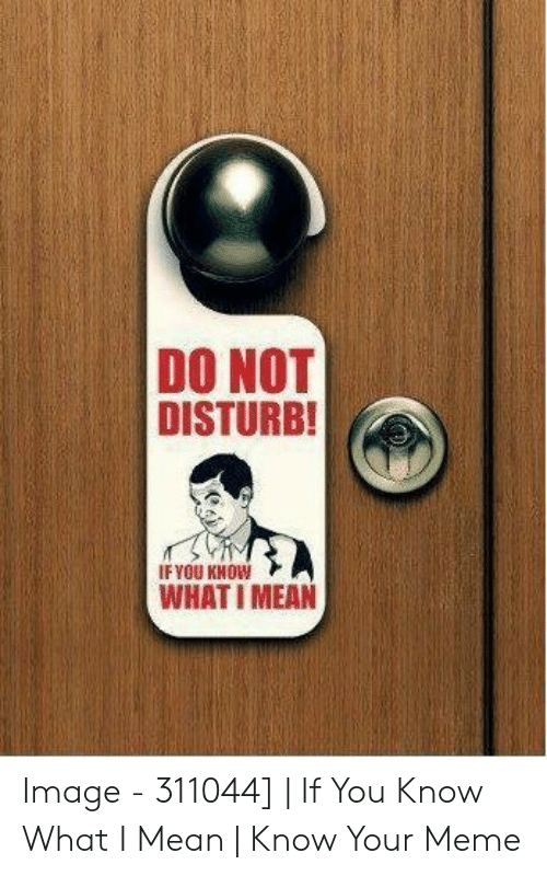 Do Not Disturb Meme: DO NOT  DISTURB!  IFYOU KNOW  WHATI MEAN Image - 311044] | If You Know What I Mean | Know Your Meme