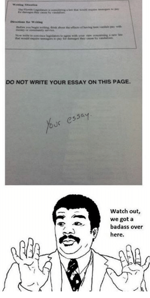 We write your essay