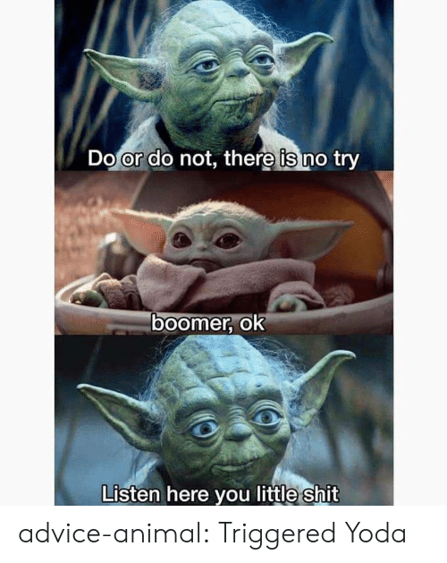 do or do not there is no try: Do or do not, there is no try  ०ा  boomer, ok  Listen here you little shit advice-animal:  Triggered Yoda