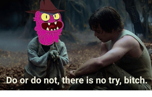 there is no try: Do or do not, there is no try, bitch.