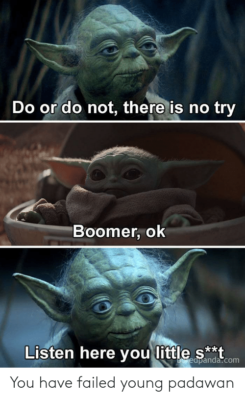 do or do not there is no try: Do or do not, there is no try  Boomer, ok  Listen here you little s**t  Doreapanda.com You have failed young padawan
