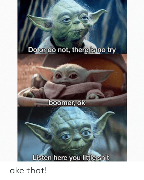 do or do not there is no try: Do or do not, there is no try  boomer, ok  Listen here you little shit Take that!