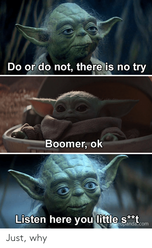 do or do not there is no try: Do or do not, there is no try  Boomer, ok  Listen here you little s**t  Doreapanda.com Just, why