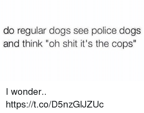 """Dogs, Funny, and Police: do regular dogs see police dogs  and think """"oh shit it's the cops"""" I wonder.. https://t.co/D5nzGlJZUc"""