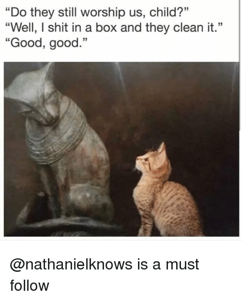 """worship: """"Do they still worship us, child?""""  """"Well, I shit in a box and they clean it.""""  """"Good, good.""""  35 @nathanielknows is a must follow"""