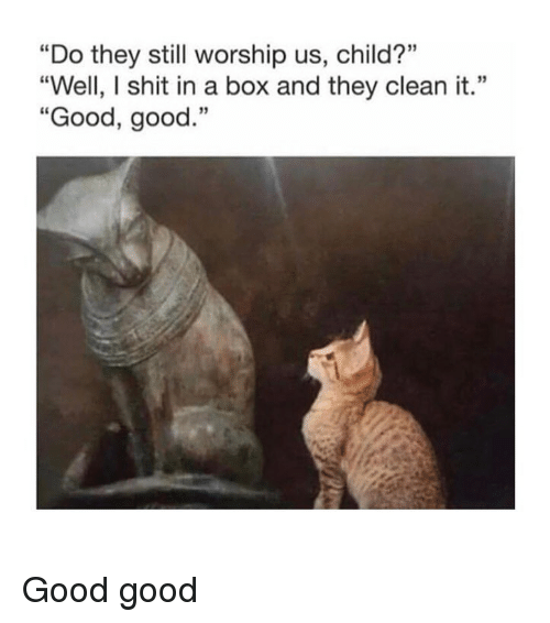 """worship: """"Do they still worship us, child?""""  """"Well, I shit in a box and they clean it.""""  """"Good, good.""""  03  13 Good good"""