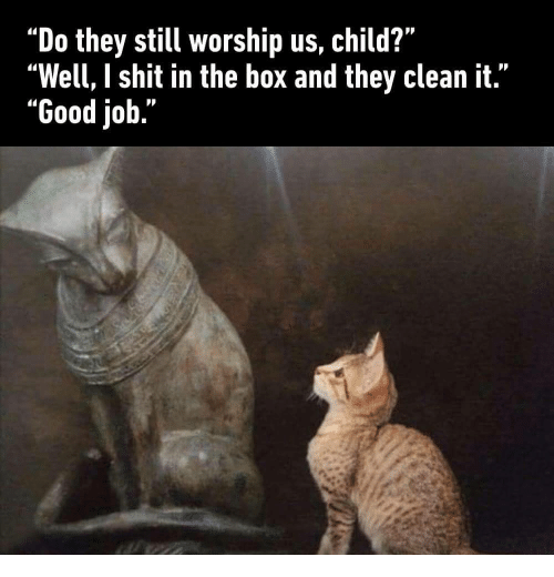 """worship: """"Do they still worship us, child?""""  """"Well, I shit in the box and they clean it.""""  """"Good job."""""""