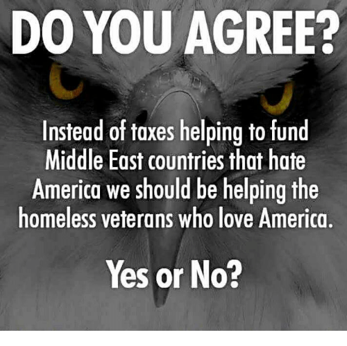America, Homeless, and Love: DO YOU AGREE?  Instead of taxes helping to fund  Middle East countries that hate  America we should be helping the  homeless veterans who love America,  Yes or No?