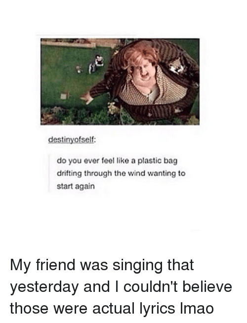 Like A Plastic Bag: do you ever feel like a plastic bag  drifting through the wind wanting to  start again My friend was singing that yesterday and I couldn't believe those were actual lyrics lmao
