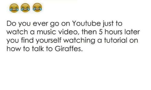 Memes, Music, and youtube.com: Do you ever go on Youtube just to  watch a music video, then 5 hours later  you find yourself watching a tutorial on  how to talk to Giraffes.