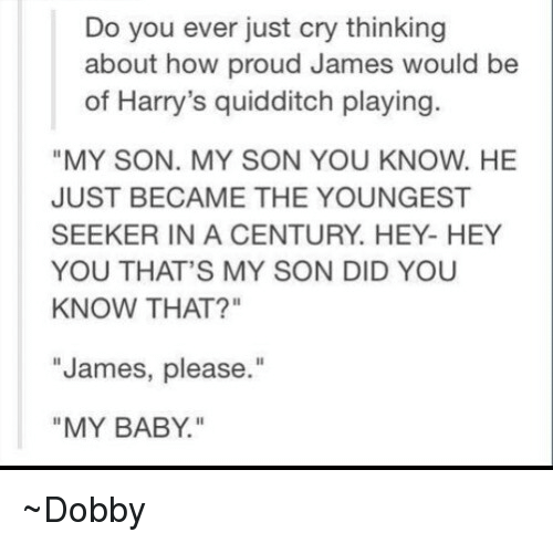 """Thats My Son: Do you ever just cry thinking  about how proud James would be  of Harry's quidditch playing  """"MY SON. MY SON YOU KNOW. HE  JUST BECAME THE YOUNGEST  SEEKER IN A CENTURY. HEY- HEY  YOU THAT'S MY SON DID YOU  KNOW THAT?""""  James, please.""""  MY BABY. ~Dobby"""