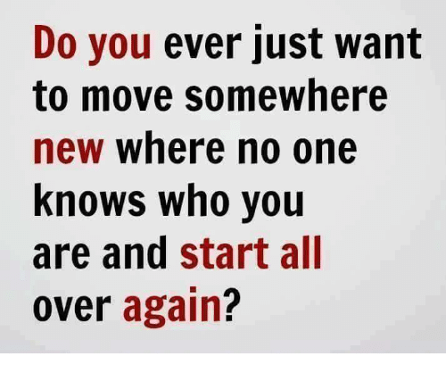 Memes, 🤖, and Wanted: Do you ever just want  to move somewhere  new where no one  knows who you  are and start all  over again?