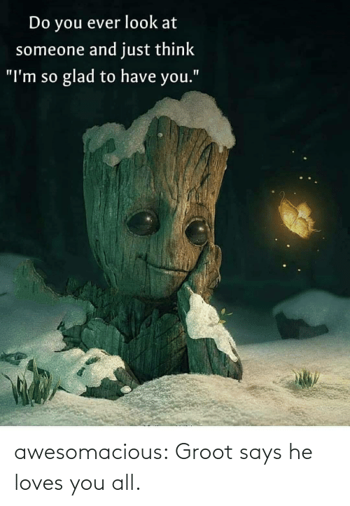 """Im So: Do you ever look at  someone and just think  glad to have you.""""  """"I'm so awesomacious:  Groot says he loves you all."""