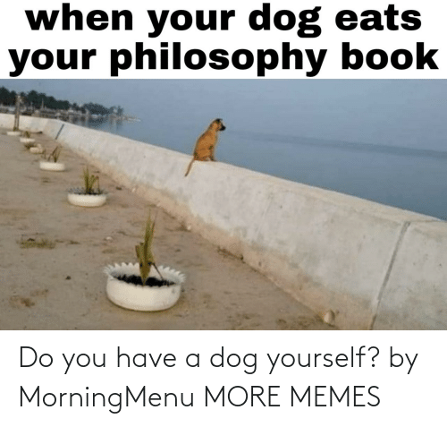 A Dog: Do you have a dog yourself? by MorningMenu MORE MEMES