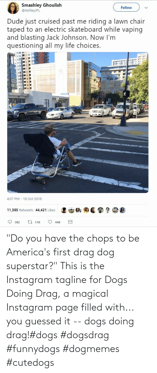 "drag: ""Do you have the chops to be America's first drag dog superstar?"" This is the Instagram tagline for Dogs Doing Drag, a magical Instagram page filled with... you guessed it -- dogs doing drag!#dogs #dogsdrag #funnydogs #dogmemes #cutedogs"