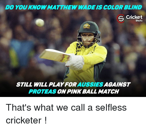 Matthew Wade: DO YOU KNOW MATTHEW WADE IS COLOR BLIND  S Cricket  Shots  STILL WILL AUSSIES  AGAINST  PROTEAS  PINK BALL MATCH That's what we call a selfless cricketer !