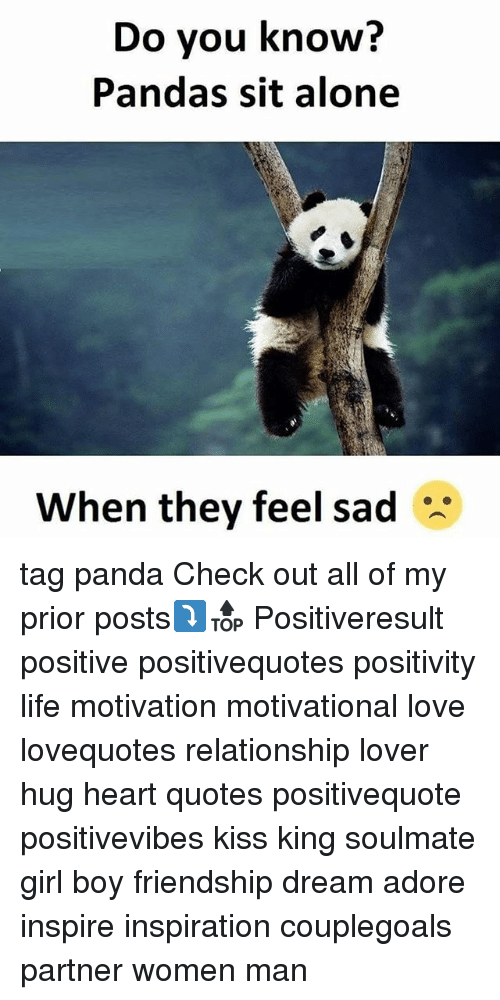 Being Alone, Life, and Love: Do you know?  Pandas sit alone  When they feel sad tag panda Check out all of my prior posts⤵🔝 Positiveresult positive positivequotes positivity life motivation motivational love lovequotes relationship lover hug heart quotes positivequote positivevibes kiss king soulmate girl boy friendship dream adore inspire inspiration couplegoals partner women man