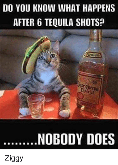 Doe memes and tequila do you know what happens after 6 tequila