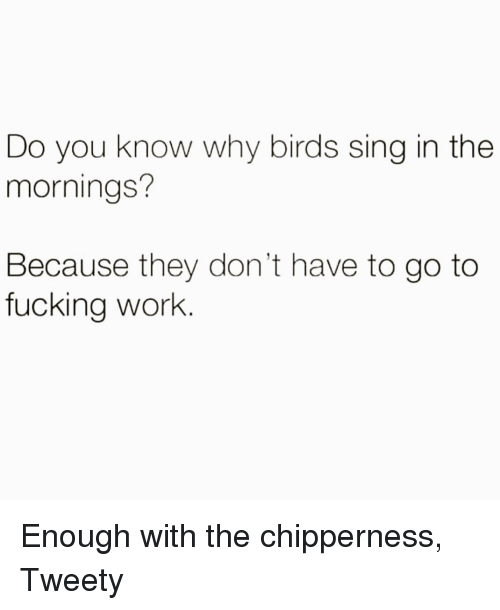 Mornings: Do you know why birds sing in the  mornings?  Because they don't have to go to  fucking work Enough with the chipperness, Tweety