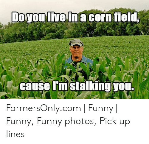 Farmersonly Com Meme: Do you live in a corn field  cause I'm stalking you. FarmersOnly.com | Funny | Funny, Funny photos, Pick up lines