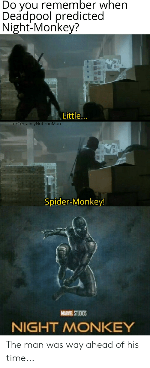 spider monkey: Do you remember when  Deadpool predicted  Night-Monkey?  Little...  u/CertainlyNotlronMan  Spider-Monkey!  MARVEL STUDIOS  NIGHT MONKEY The man was way ahead of his time...