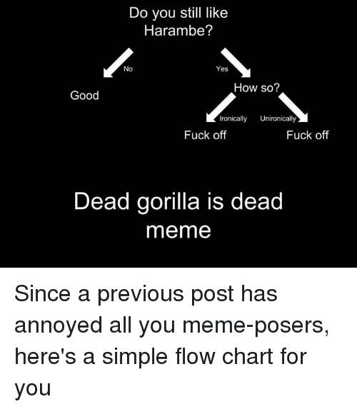 Fucking, Ironic, and Meme: Do you still like  Harambe?  No  Yes  How so?  Good  Ironically  Unironically  Fuck off  Fuck off  Dead gorilla is dead  meme Since a previous post has annoyed all you meme-posers, here's a simple flow chart for you