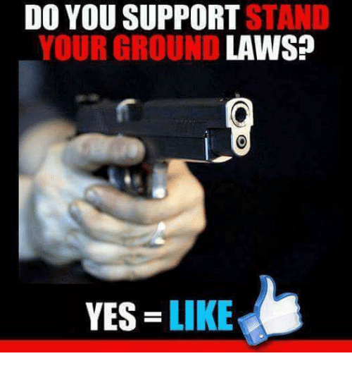 Memes, 🤖, and Yes: DO  YOU  SUPPORT  STN  YOUR GROUND  LAWS?  YES LIKE