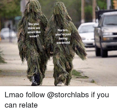 Lmao, Smell, and Weed: Do you  think we  smell like  weed?  Na bro,  you'rejust  being  paranoid Lmao follow @storchlabs if you can relate