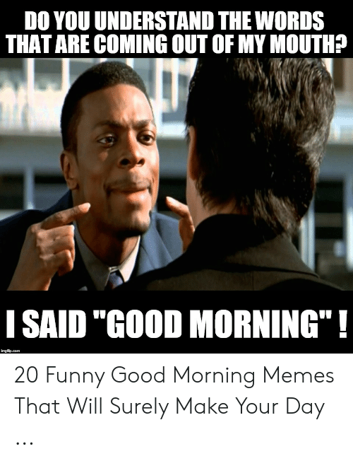 "I Said Good Day Meme: DO YOU UNDERSTAND THE WORDS  THAT ARE COMING OUT OF MY MOUTH?  I SAID ""GOOD MORNING""! 20 Funny Good Morning Memes That Will Surely Make Your Day ..."