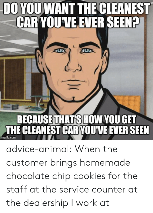 chocolate chip cookies: DO YOU WANT THE CLEANEST  CAR YOUVE EVER SEENP  BECAUSETHATSHOW YOU GET  THE CLEANEST CAR YOU'VE EVER SEEN  imgflip.com advice-animal:  When the customer brings homemade chocolate chip cookies for the staff at the service counter at the dealership I work at